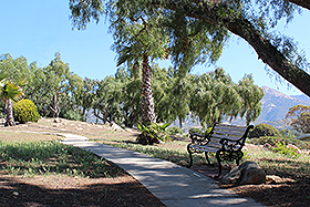 WALKING TRAIL WITH VIEWS